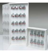Enclosed Padlock Storage Modules